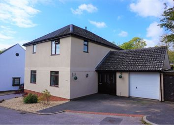 Thumbnail 4 bed detached house for sale in Greenclose Court, Colyton