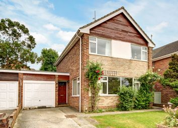 Thumbnail 3 bed detached house to rent in Sycamore Rise, Newbury