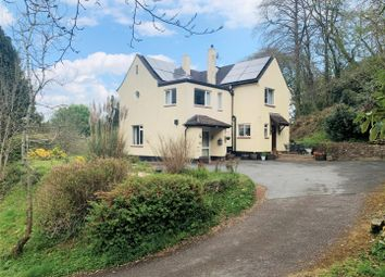 Ashley, Tiverton EX16. 5 bed detached house for sale