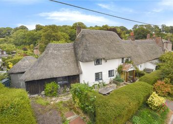 Thumbnail 3 bed detached house for sale in The Triangle, Winterborne Stickland, Blandford Forum, Dorset