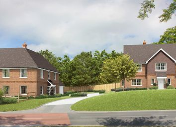 Thumbnail 4 bed detached house for sale in The Drive, Hellingly, Hailsham