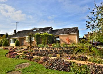 Thumbnail 3 bed detached bungalow for sale in Main Street, Braceborough, Stamford