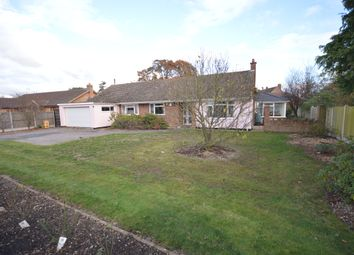 Thumbnail 4 bed detached bungalow for sale in Church Road, Alresford, Colchester