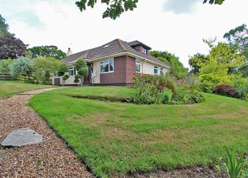 4 bed bungalow for sale in South Sway Lane, Sway, Lymington, Hampshire SO41