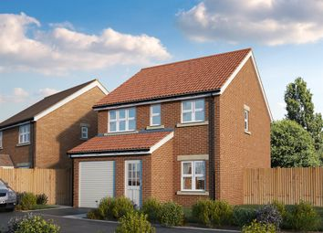 "Thumbnail 3 bed detached house for sale in ""The Piccadilly "" at Forge Wood, Crawley"