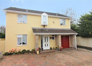 Thumbnail 4 bed detached house for sale in Bridle Close, Paignton