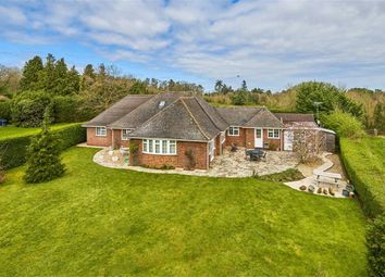 3 bed detached bungalow for sale in Waverley Lane, Farnham, Surrey GU9