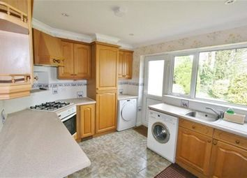 Thumbnail 3 bed bungalow to rent in Foyle Park, Basingstoke