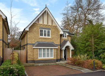 Thumbnail 4 bed detached house to rent in Meadows Drive, Camberley, Surrey