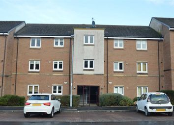 Thumbnail 2 bed flat for sale in Cypress Lane, Hamilton