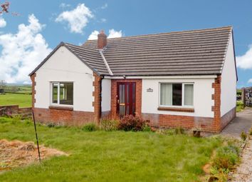 Thumbnail 2 bed detached bungalow for sale in Oakleigh, Aikton, Wigton, Cumbria