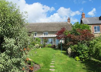 Thumbnail 2 bed end terrace house for sale in Seaborough, Beaminster, Dorset