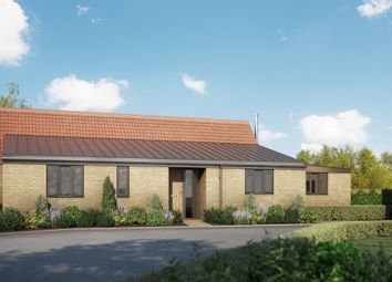 Thumbnail 3 bed detached bungalow for sale in Feast Green, Stretham, Ely