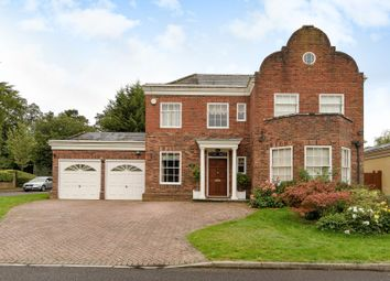 Thumbnail 5 bed detached house to rent in Devonshire Park, Reading