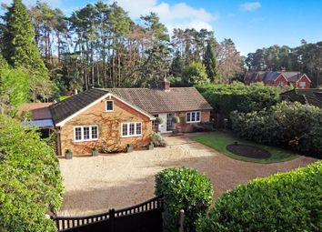 Thumbnail 3 bed bungalow for sale in Kingswood Firs, Grayshott, Hindhead