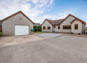 Thumbnail 4 bed bungalow for sale in Aultmore, Keith