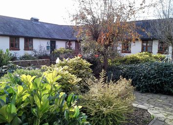 Thumbnail 2 bed terraced bungalow to rent in Speedgate Hill, Fawkham