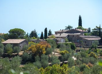 Thumbnail 20 bed country house for sale in Fattoria Il Biologico, Castelnuovo Berardenga, Siena, Tuscany, Italy