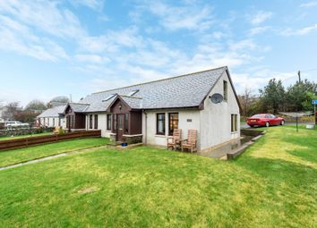 Thumbnail 3 bedroom semi-detached house for sale in Greystone, Carmyllie, Angus