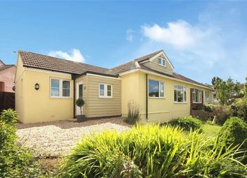 Thumbnail 4 bed semi-detached bungalow for sale in Brookdale Park, Central Area, Brixham