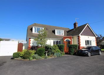Thumbnail 5 bed detached bungalow for sale in Rhododendron Avenue, Sticklepath, Barnstaple