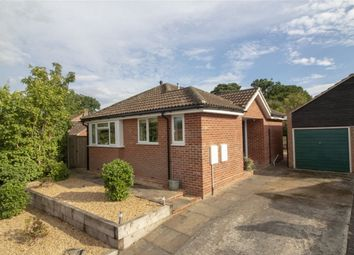 Thumbnail 2 bed detached bungalow for sale in Earlsbourne, Church Crookham, Fleet
