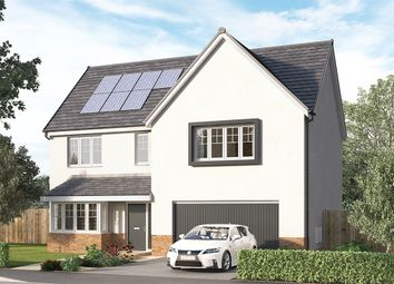 """Thumbnail 4 bed detached house for sale in """"The Trewbrook"""" at Aurs Road, Barrhead, Glasgow"""
