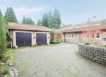 Thumbnail 6 bed detached house for sale in Brancepeth, Brancepeth, Durham