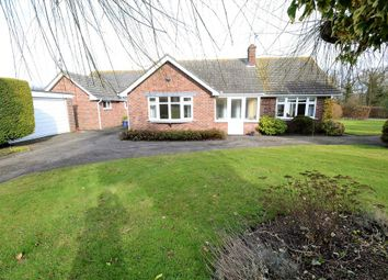 Thumbnail 3 bed detached bungalow for sale in Upsher Green, Great Waldingfield, Sudbury