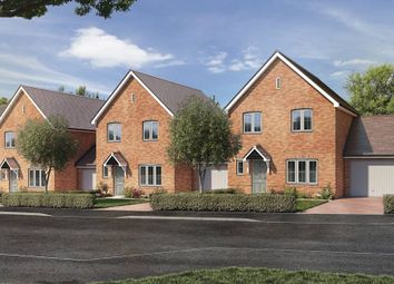 "Thumbnail 3 bed detached house for sale in ""The Himscot - Detached"" at St. Legers Way, Riseley, Reading"