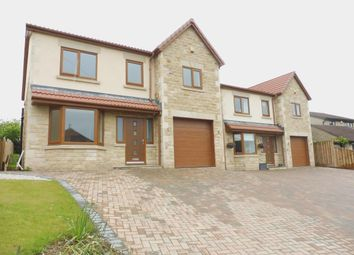 Thumbnail 4 bed detached house to rent in Manor Road, Wales, Sheffield