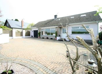 Thumbnail 5 bed detached bungalow for sale in -, Bryngwyn, Raglan, Usk, Monmouthshire