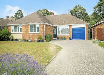 Thumbnail 3 bed detached bungalow for sale in The Thicket, Down End, Fareham