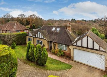 Thumbnail 5 bed detached bungalow for sale in Knob Field, Abinger Hammer, Dorking