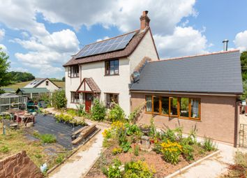 Thumbnail 4 bedroom detached house for sale in West Lodge Cross, Crediton