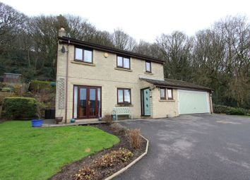 Thumbnail 4 bed detached house for sale in Quarry Bank, Matlock