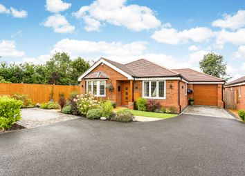 Thumbnail 3 bed bungalow to rent in Lovel Road, Winkfield, Windsor