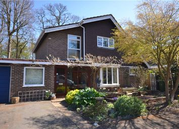 Thumbnail 4 bed detached house for sale in Kendal Grove, Camberley, Surrey