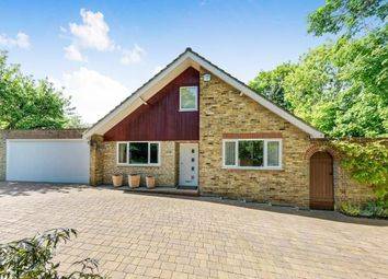 Thumbnail 4 bed bungalow for sale in Bookham, Surrey