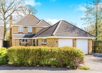 Thumbnail 4 bedroom detached house for sale in Totton, Southampton, Hampshire