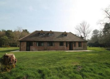 Thumbnail 3 bed semi-detached house to rent in Stanford Common, Pirbright, Woking, Surrey