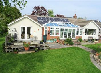 Thumbnail 4 bed detached bungalow for sale in Cherry Trees, Linton, Ross-On-Wye