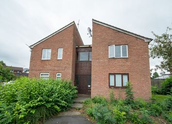 Thumbnail Studio for sale in Mansfield Close, Birchwood, Warrington