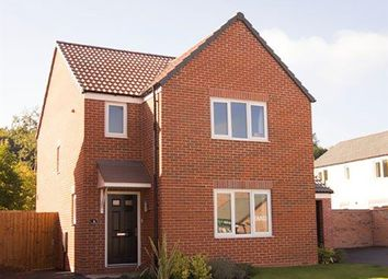"Thumbnail 3 bed detached house for sale in ""The Hatfield"" at Main Street, Kings Newton, Melbourne, Derby"