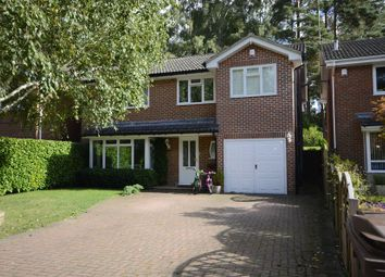 Thumbnail 5 bed detached house to rent in Oakwood Road, Windlesham