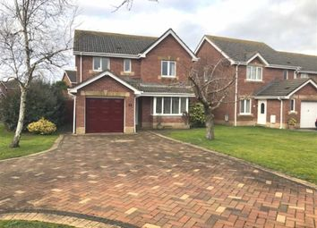 Thumbnail 4 bed detached house for sale in Sandpiper Road, Llanelli