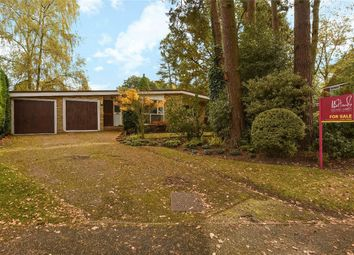 Thumbnail 3 bed detached bungalow for sale in Greenside, Crowthorne, Berkshire