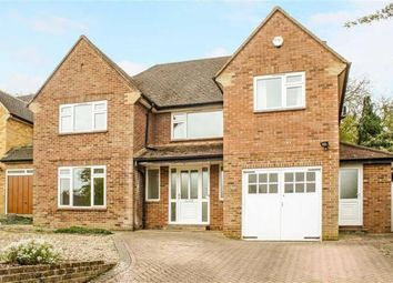 Thumbnail 5 bedroom detached house to rent in Rushington Avenue, Maidenhead Central