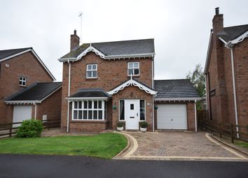 Thumbnail 3 bed detached house for sale in Taughrane Lodge, Dollingstown, Craigavon
