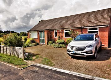 Thumbnail 4 bed detached bungalow for sale in Winchester Road, Boorley Green